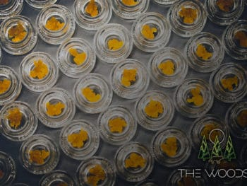 How To Use Cannabis Concentrates