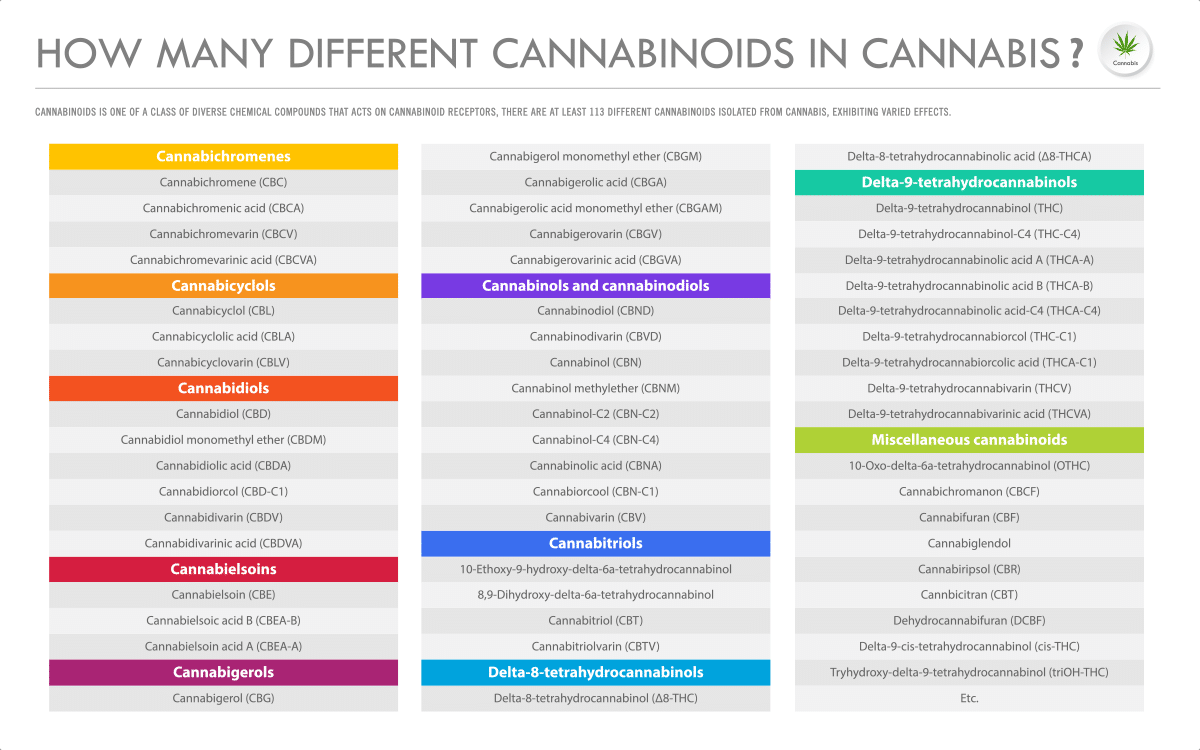 Types of Cannabinoids and Their Effects